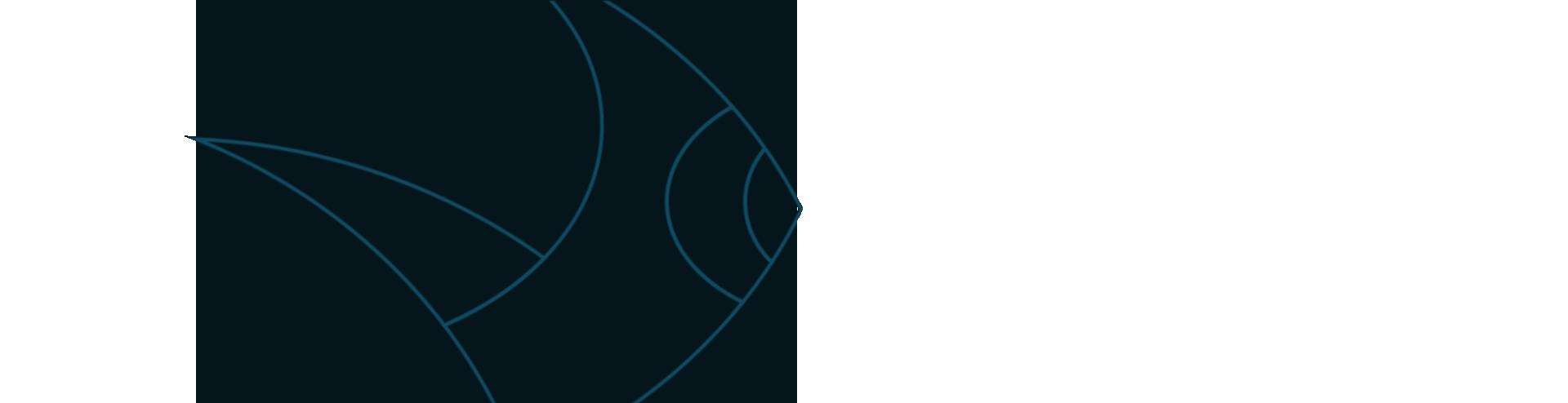 VCW Watermark Logo